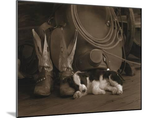 Cowboy Puppy-Robert Dawson-Mounted Art Print