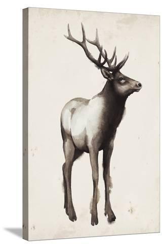 Northern Journey I-Grace Popp-Stretched Canvas Print
