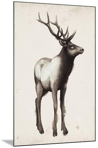 Northern Journey I-Grace Popp-Mounted Art Print