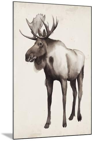 Northern Journey II-Grace Popp-Mounted Art Print