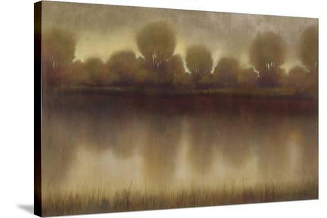 Marsh of the Warm Sunset-Albert Williams-Stretched Canvas Print