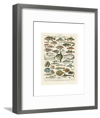 Poissons I-Adolphe Millot-Framed Art Print