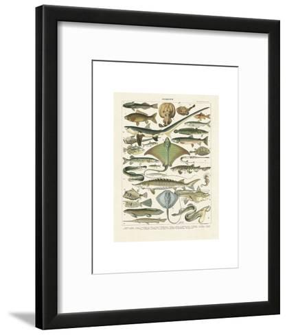 Poissons II-Adolphe Millot-Framed Art Print