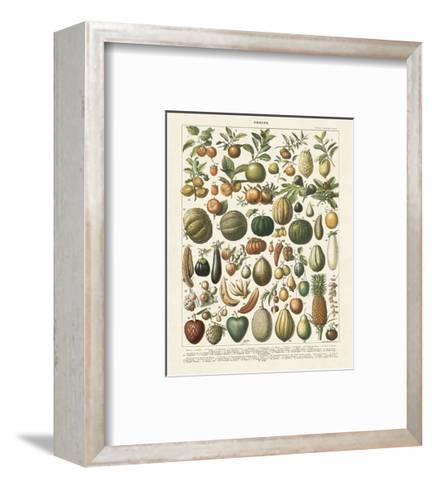 Fruits I-Adolphe Millot-Framed Art Print