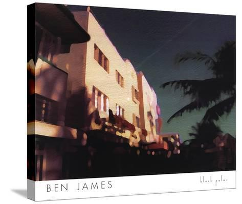 Black Palms-Ben James-Stretched Canvas Print