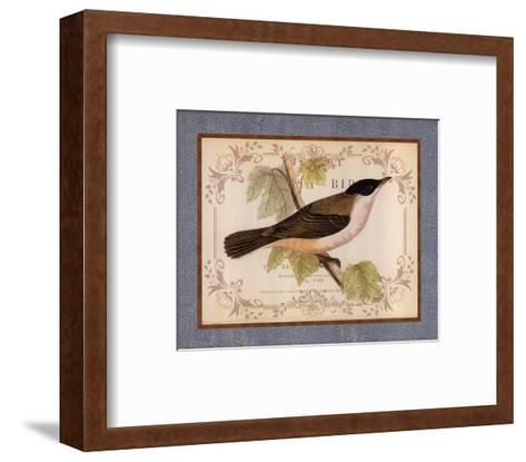 British Birds IV--Framed Art Print