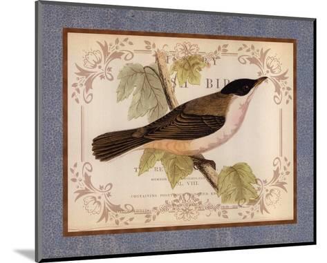 British Birds IV--Mounted Art Print