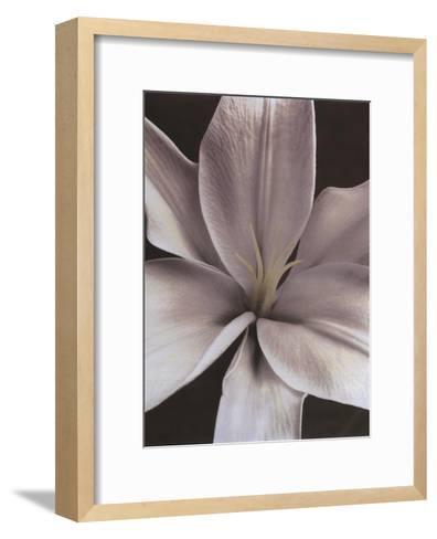 Lily II-Dianne Poinski-Framed Art Print