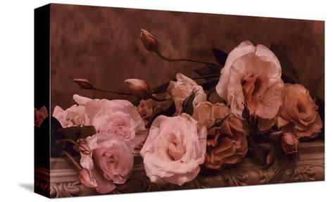 Palest Pink-Julie Greenwood-Stretched Canvas Print
