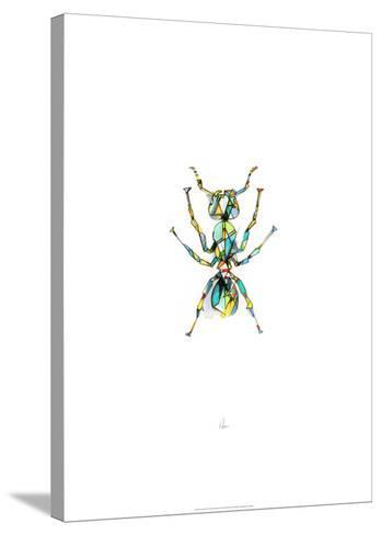 Ant-Alexis Marcou-Stretched Canvas Print
