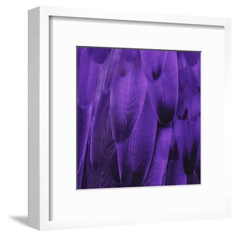 Feathered Friend - Purple-Julia Bosco-Framed Art Print