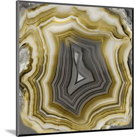 Agate in Gold & Grey-Danielle Carson-Mounted Giclee Print