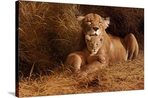 A Mother's Pride-W^ Michael Frye-Stretched Canvas Print