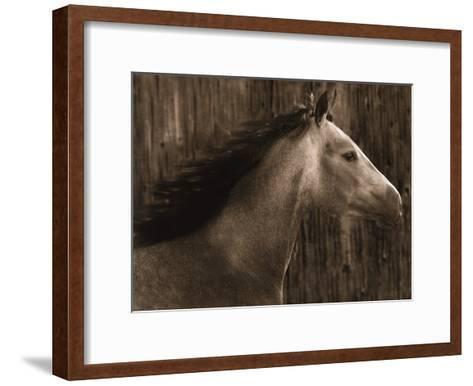 Buckskin-Robert Dawson-Framed Art Print