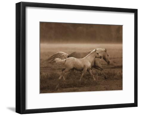 Prairie Run-Robert Dawson-Framed Art Print