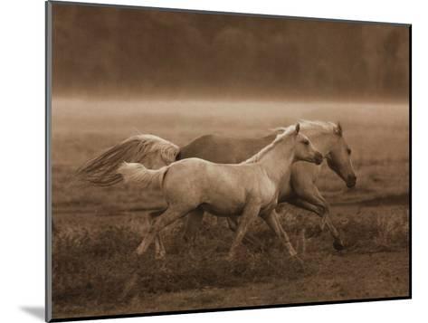 Prairie Run-Robert Dawson-Mounted Art Print