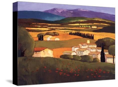 Village au Printemps-Elisabeth Estivalet-Stretched Canvas Print