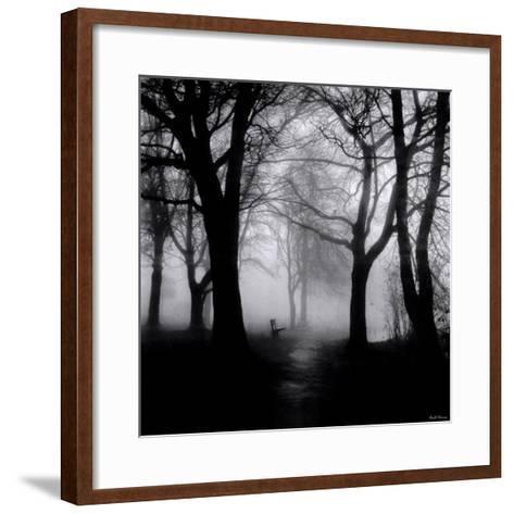Wooded Bench-Harold Silverman-Framed Art Print