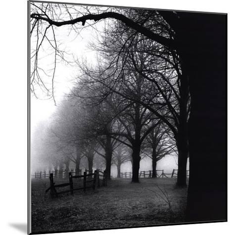Black And White Morning-Harold Silverman-Mounted Art Print