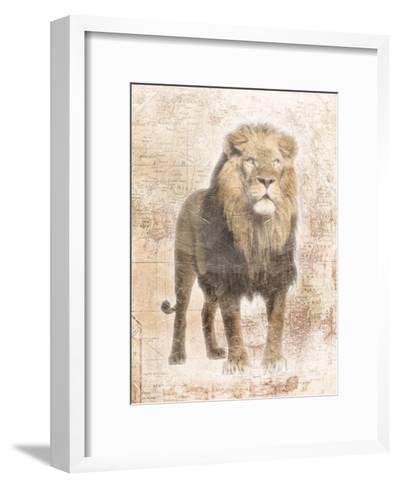 African Lion-Jace Grey-Framed Art Print