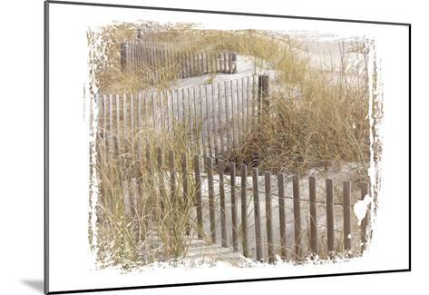 Coastal Photography 1-Melody Hogan-Mounted Art Print