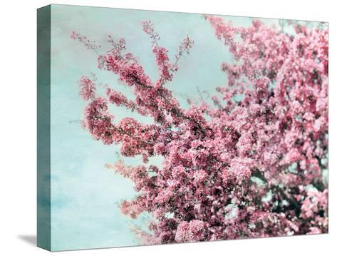 Blossoming Spring-Tracey Telik-Stretched Canvas Print