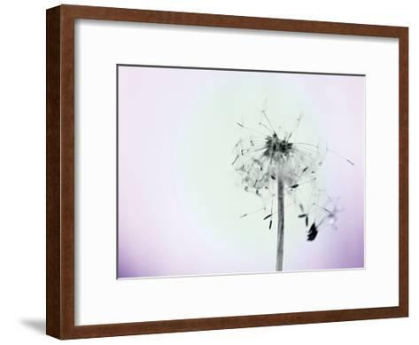 Wishes On A Wind-Tracey Telik-Framed Art Print