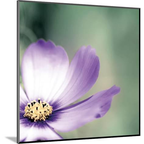 Lonely Lilac 1-Tracey Telik-Mounted Art Print