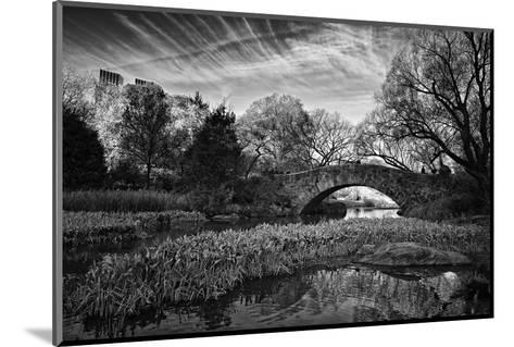Magic Of Central Park-Joseph Rowland-Mounted Art Print