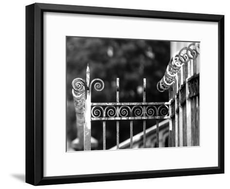 Fence 3-Tracey Telik-Framed Art Print