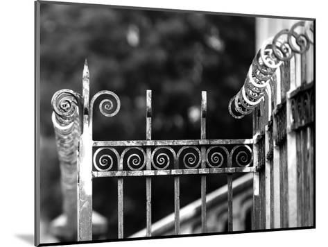 Fence 3-Tracey Telik-Mounted Art Print