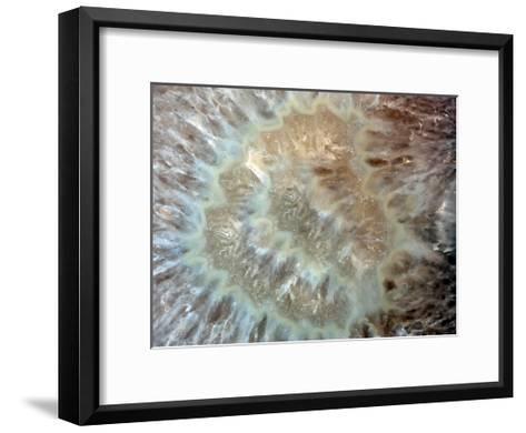 Chewy Minerals-Sandro De Carvalho-Framed Art Print