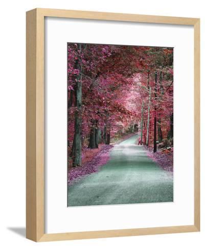 Hudson Byway 3-Sandro De Carvalho-Framed Art Print