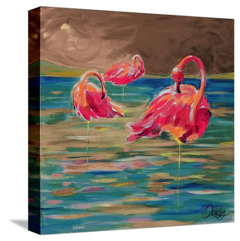 Trio Flamingos-Anne Ormsby-Stretched Canvas Print