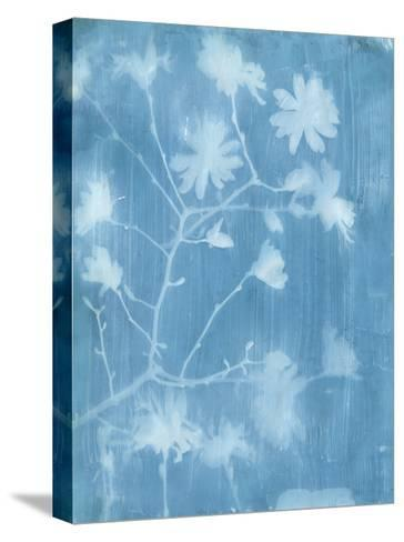 Spring Time Magnolia 1-Smith Haynes-Stretched Canvas Print