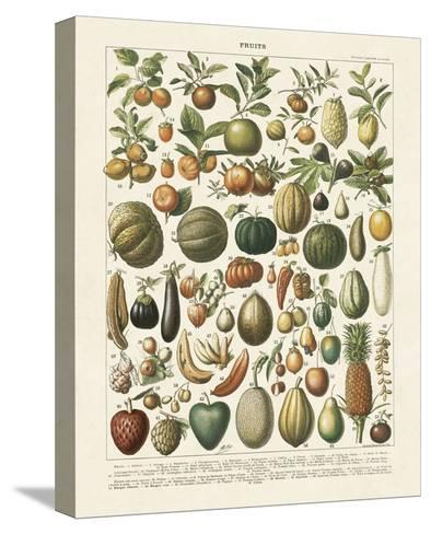 Fruits I-Adolphe Millot-Stretched Canvas Print