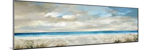 Ocean Serenity-Paul Duncan-Mounted Giclee Print