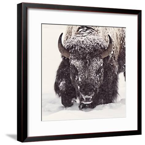 Fortitude-Wink Gaines-Framed Art Print