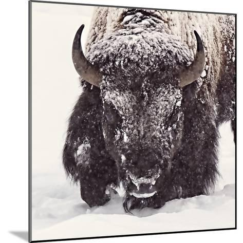 Fortitude-Wink Gaines-Mounted Giclee Print