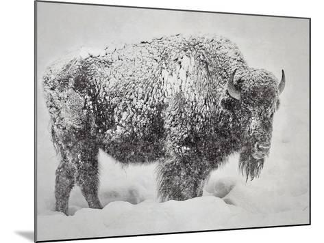 In the Storm-Wink Gaines-Mounted Giclee Print