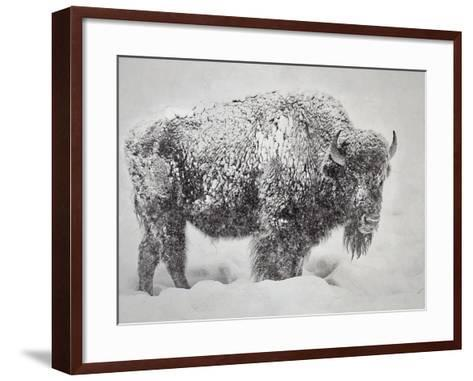 In the Storm-Wink Gaines-Framed Art Print