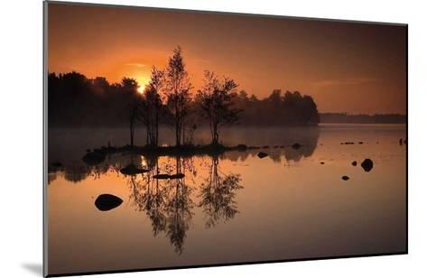 By the Lake-J?rgen Sch?n-Mounted Art Print