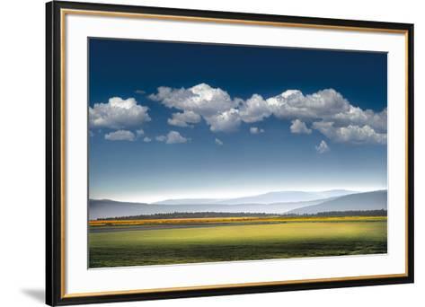 Catch the Wind-William Vanscoy-Framed Art Print