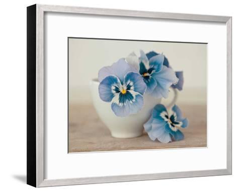 Pansies-Ian Winstanley-Framed Art Print