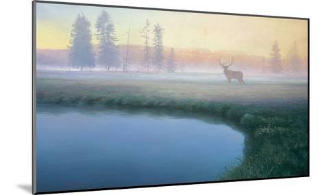 Yellowstone Mist-Adriano Manocchia-Mounted Art Print