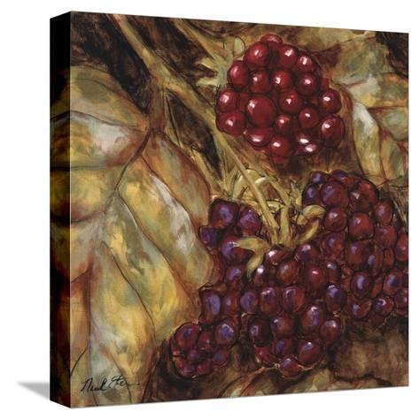 Ripening Berries-Nicole Etienne-Stretched Canvas Print