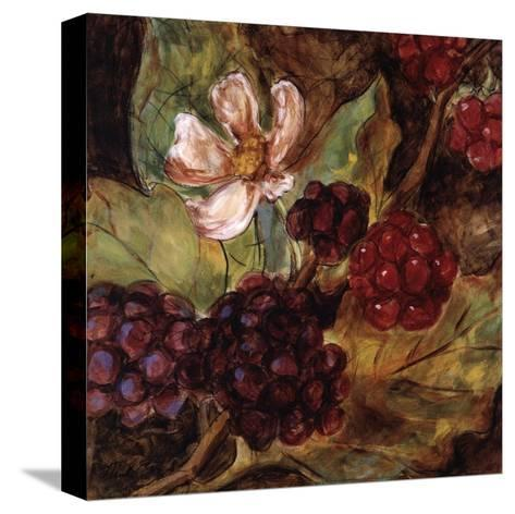 Red Berries And Blossom-Nicole Etienne-Stretched Canvas Print
