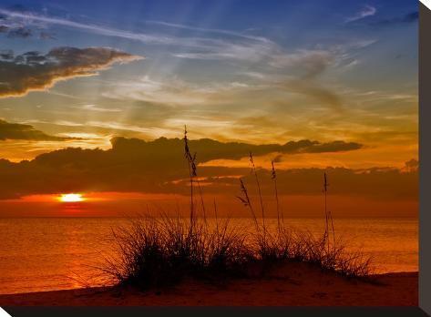 Gorgeous Sunset-Melanie Viola-Stretched Canvas Print