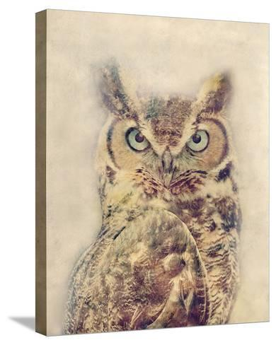 Wise-Midori Greyson-Stretched Canvas Print