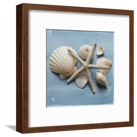 Shell Collection I-Bill Philip-Framed Art Print